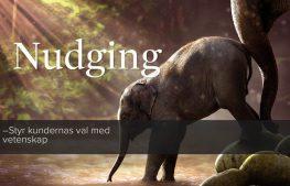 Kurs: Nudging – styr kundernas val med vetenskap